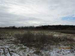 Tiny photo for 6650 DERBY, Applegate, MI 48401 (MLS # 31368701)