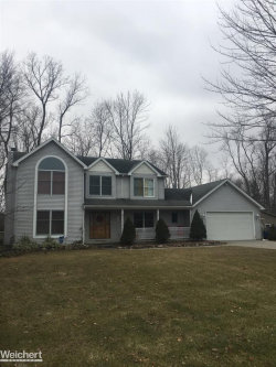 Photo of 6219 WILDROSE LN., Burtchville, MI 48059 (MLS # 31368972)