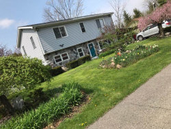 Photo of 4697 Maple St., Newport, MI 48166-9003 (MLS # 31373923)