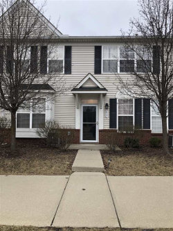 Photo of 617 Powell Dr, Dundee, MI 48131 (MLS # 31374014)