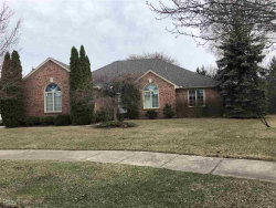 Photo of 2570 Larch Dr, Sterling Heights, MI 48314 (MLS # 31375989)