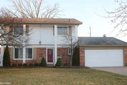 Photo of 12360 Moers Drive, Sterling Heights, MI 48313 (MLS # 31376227)