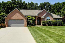 Photo of 4606 Waynick Dr, Britton, MI 49229 (MLS # 31384806)
