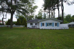 Photo of 8604 Lakeview Ave., Lexington, MI 48450 (MLS # 31385630)