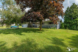 Photo of 13767 S CUSTER, Dundee, MI 48131 (MLS # 31388480)