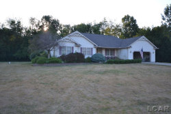 Photo of 5142 Alexander Drive, Britton, MI 49229 (MLS # 31390645)