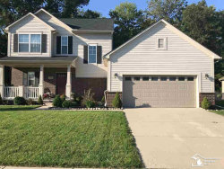 Photo of 718 Forest, Dundee, MI 48131 (MLS # 31398793)