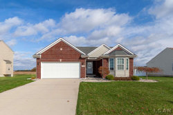 Photo of 724 Sommersby St., Dundee, MI 48131 (MLS # 31399455)