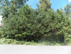 Photo of 0 COOL WATER DR, Lot 14, Hickory, NC 28601 (MLS # 9589806)