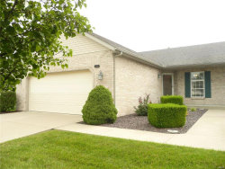 Photo of 4562 Elk Meadows Lane, Smithton, IL 62285-2938 (MLS # 16059882)
