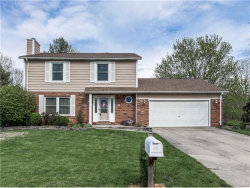 Photo of 712 Andra Drive, Maryville, IL 62062 (MLS # 17028564)