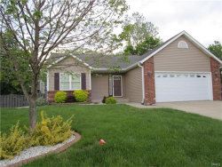 Photo of 805 Woodland Drive, Maryville, IL 62062-5692 (MLS # 17036879)