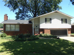Photo of 3141 Fehling, Granite City, IL 62040-3633 (MLS # 17048236)
