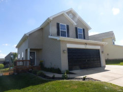 Photo of 201 Autumn Oaks Drive, Troy, MO 63379 (MLS # 17048281)