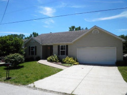 Photo of 324 East 4th Street, Moscow Mills, MO 63362-1229 (MLS # 17049037)
