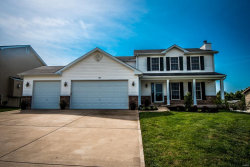 Photo of 176 Rockport Drive, Troy, MO 63379-3563 (MLS # 17055748)