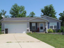 Photo of 1208 Hawthorn Court, Troy, MO 63379-3325 (MLS # 17055852)
