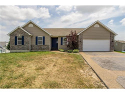 Photo of 12 Glen Dale Court, Troy, MO 63379-3492 (MLS # 17055959)
