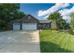 Photo of 537 West Lake Drive, Edwardsville, IL 62025-4249 (MLS # 17056624)