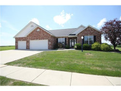 Photo of 7016 Alston Court, Edwardsville, IL 62025-7757 (MLS # 17058219)