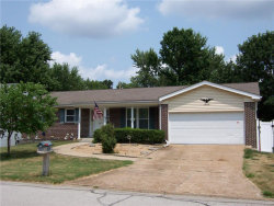 Photo of 1962 Lone Pine Drive, Arnold, MO 63010-1306 (MLS # 17058624)