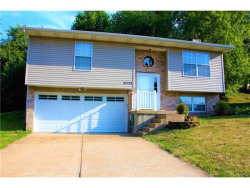 Photo of 4332 Sunny Brook Court, Arnold, MO 63010-4841 (MLS # 17059492)