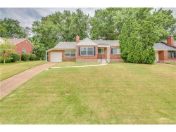 Photo of 649 Cannonbury Drive, Webster Groves, MO 63119-5312 (MLS # 17061358)