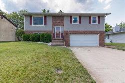 Photo of 420 Oakwood Drive, Troy, IL 62294-1017 (MLS # 17061794)