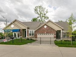 Photo of 16193 Amber Vista Drive, Ellisville, MO 63021 (MLS # 17061804)