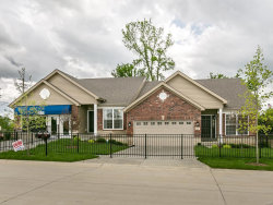 Photo of 16184 Amber Vista Drive, Ellisville, MO 63021 (MLS # 17061811)