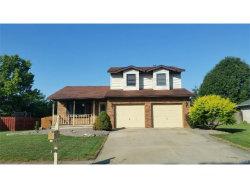 Photo of 1263 Chancellor Drive, Edwardsville, IL 62025-6202 (MLS # 17061983)