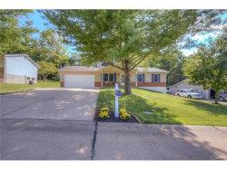 Photo of 813 Williams Drive, Eureka, MO 63025-2117 (MLS # 17067279)
