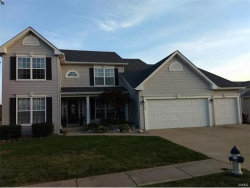 Photo of 70 Aspen Ridge Ct., St Peters, MO 63376-1676 (MLS # 17067376)