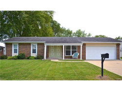 Photo of 9006 North Blue Haven Drive, Troy, IL 62294 (MLS # 17069703)