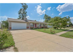 Photo of 250 Hickory Forest Drive, Troy, MO 63379 (MLS # 17071852)