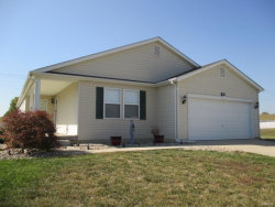 Photo of 30 Springbrook Court, Moscow Mills, MO 63362 (MLS # 17073717)