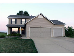 Photo of 193 Whitetail Crossing Drive, Troy, MO 63379-2563 (MLS # 17073881)