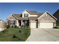 Photo of 5292 Mirasol Manor Way, Eureka, MO 63025-2761 (MLS # 17074479)