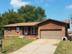 Photo of 19 Willow, St Charles, MO 63304-7223 (MLS # 17075029)