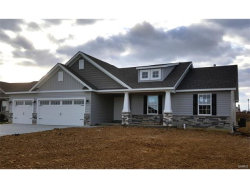 Photo of 140 Hidden Mill (lot 106) Court, Moscow Mills, MO 63362 (MLS # 17077452)