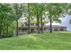 Photo of 11058 Rambling Oaks Drive, Sunset Hills, MO 63128 (MLS # 17077603)