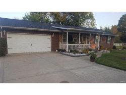 Photo of 3630 Wanda Road, Edwardsville, IL 62025-7540 (MLS # 17078239)