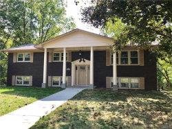 Photo of 6036 Cherokee Avenue, Glen Carbon, IL 62034 (MLS # 17079292)