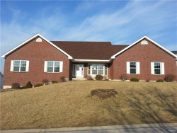 Photo of 171 Blackrock Lane, Weldon Spring, MO 63304-0546 (MLS # 17080542)
