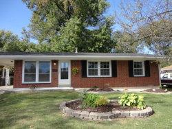 Photo of 1811 Madison Ave, Edwardsville, IL 62025 (MLS # 17080881)