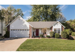 Photo of 617 River Moss Drive, St Peters, MO 63376-5340 (MLS # 17081796)