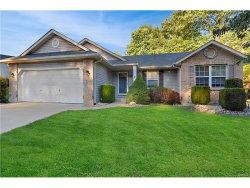 Photo of 2 Davis Woods, Collinsville, IL 62234-7114 (MLS # 17082179)