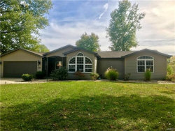 Photo of 501 Lanahan Drive, Troy, IL 62294-1703 (MLS # 17084209)