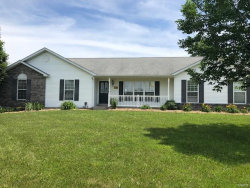 Photo of 245 Victory Court, Moscow Mills, MO 63362-2048 (MLS # 17085897)