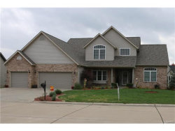 Photo of 140 Oak Hill Drive, Maryville, IL 62062-6475 (MLS # 17086993)